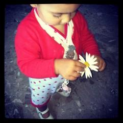 Zoe and a daisy