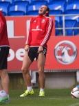 Bale Wales7