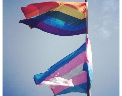 PrideFlags2013