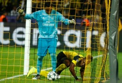 the-balls-in-the-net